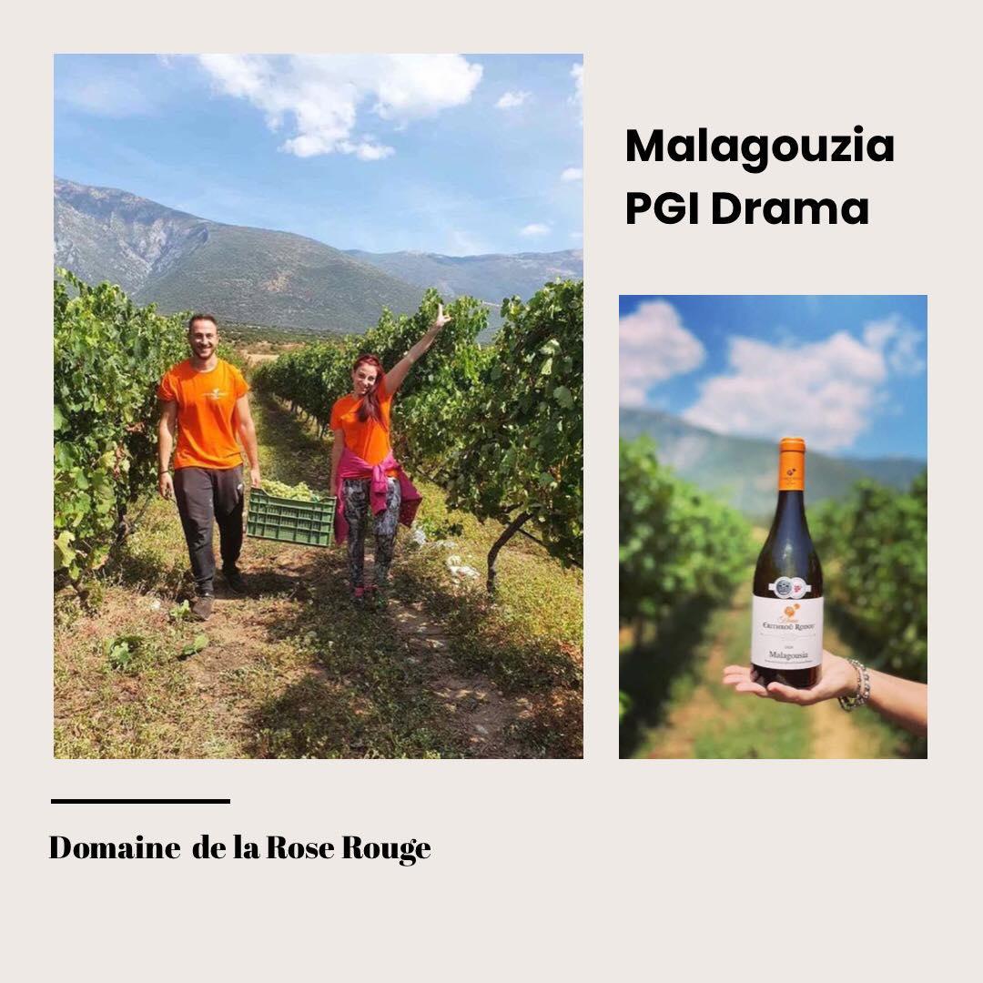 Mondial Des Vins Blancs, Strasbourg 2021 and Domaine de la Rose Rouge