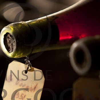 Discovering Bourgogne wines, 18th Century